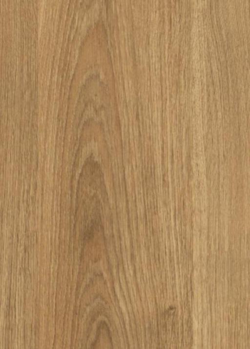 Chene Amazonia Forest Hevea Oak Laminate Flooring , 8 mm Image 1
