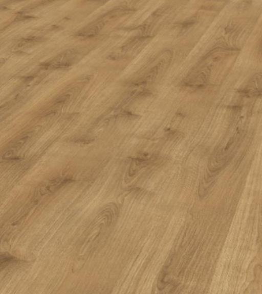 Chene Amazonia Forest Hevea Oak Laminate Flooring , 8 mm Image 2