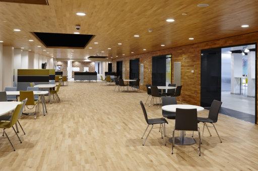 Junckers Beech Solid 2-Strip Wood Flooring, Ultra Matt Lacquered, Harmony, 129x14 mm Image 3
