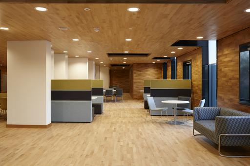Junckers Beech SylvaKet Solid 2-Strip Wood Flooring, Silk Matt Lacquered, Variation, 129x14 mm Image 2