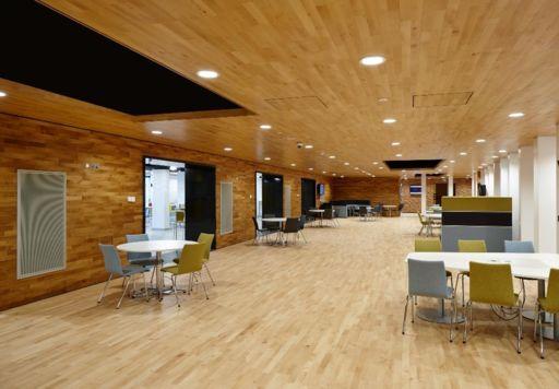 Junckers Beech Solid 2-Strip Wood Flooring, Silk Matt Lacquered, Harmony, 129x22 mm Image 1