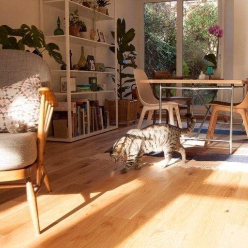 V4 Vittoria Engineered Oak Flooring, Rustic, UV Oiled, 150x14xRL mm Image 1