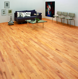 Junckers Beech Solid 2-Strip Wood Flooring, Ultra Matt Lacquered, Variation, 129x22 mm
