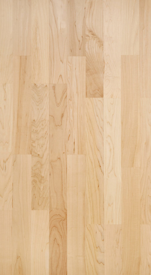 Tradition Classics Engineered 3-Strip Maple Flooring, Prime, Lacquered, 13.5x195x2200 mm