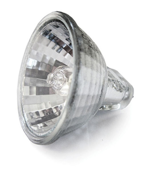 Bona Edge Halogen Lamp